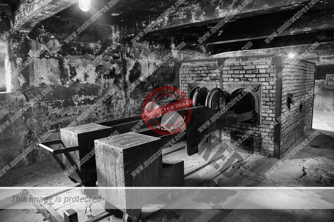 Cremation ovens